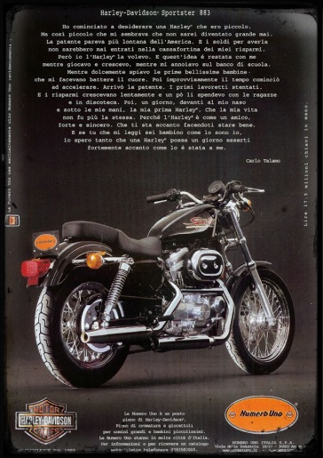 sportster 99